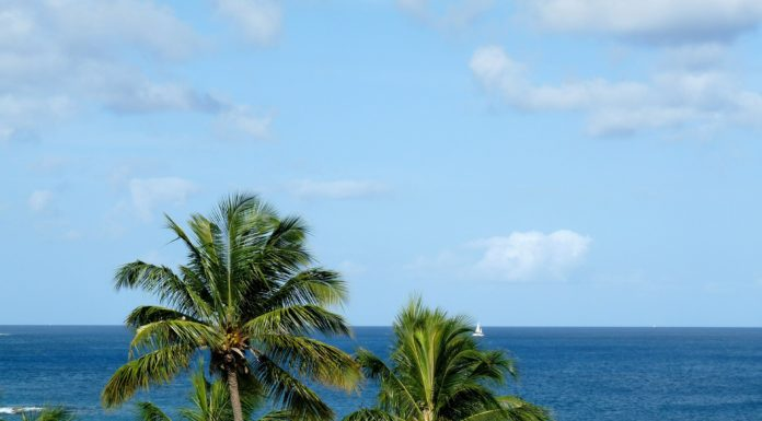 st lucia tips